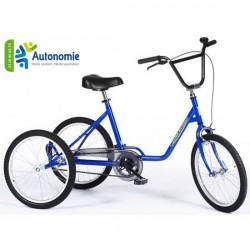 Tricycle Safari